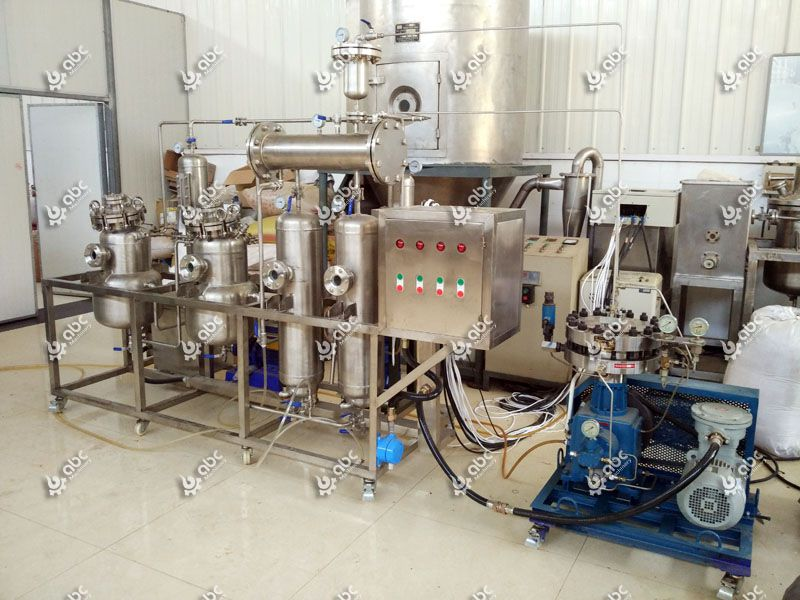 20L small ginkgo biloba oil extraction machine for sale