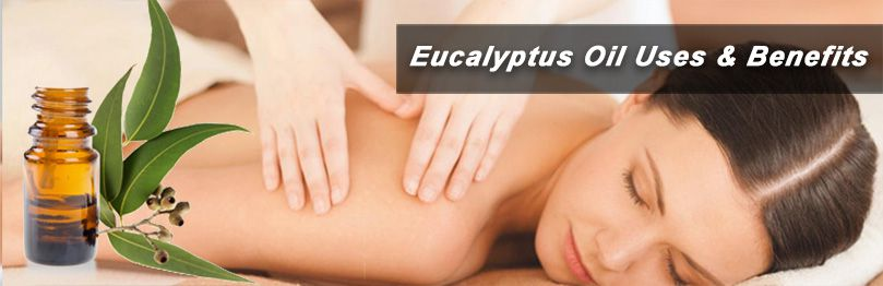 uses and benefits of eucalyptus oil