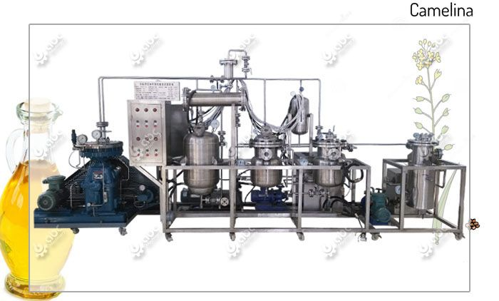 advanced camelina seed oil extraction equipment