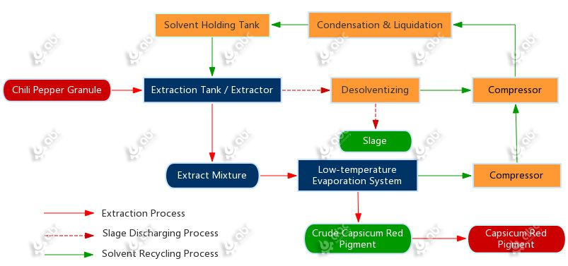 flow chart of capsicum red pigment extraction