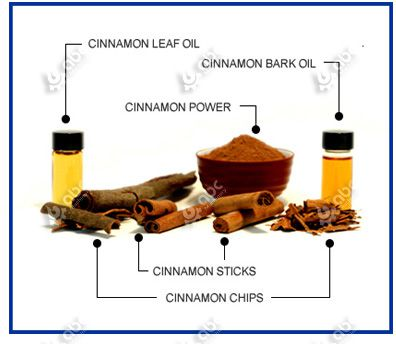cinnamon leave oil and cinnamon bark oil