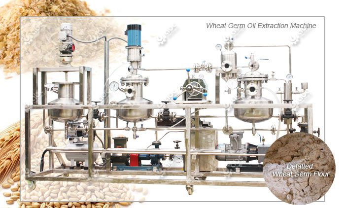 defatted wheat germ processing machine for sale