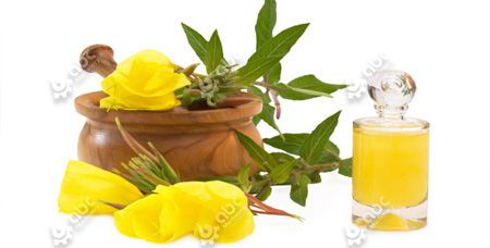 Evening Primrose Oil Extraction Methods