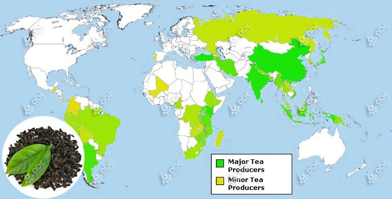 global tea production