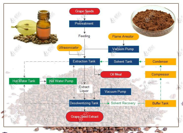 grape seed extract manufacturing process
