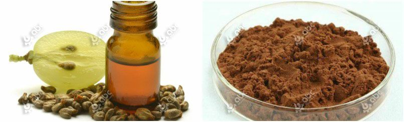 making grape seed oil and grape seed exracts