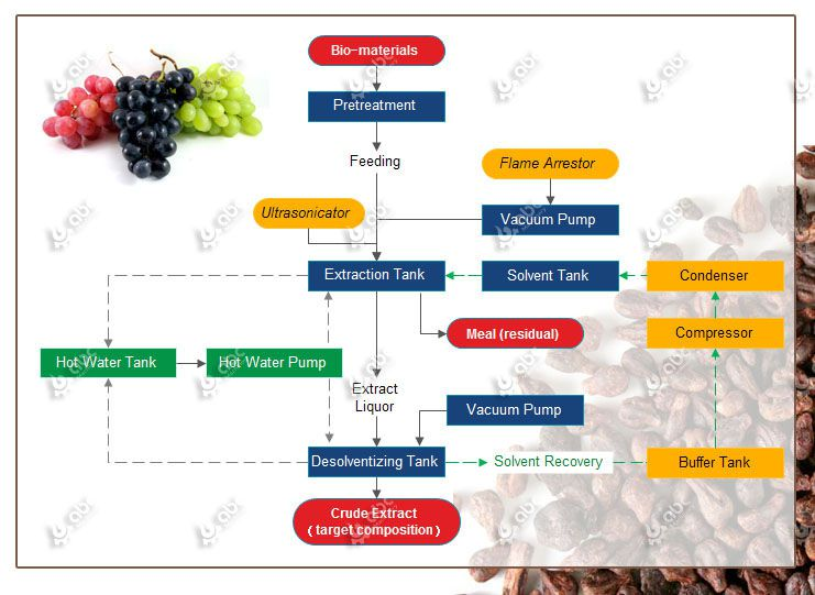 grapeseed oil extraction process