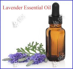 high quality lavender essential oil
