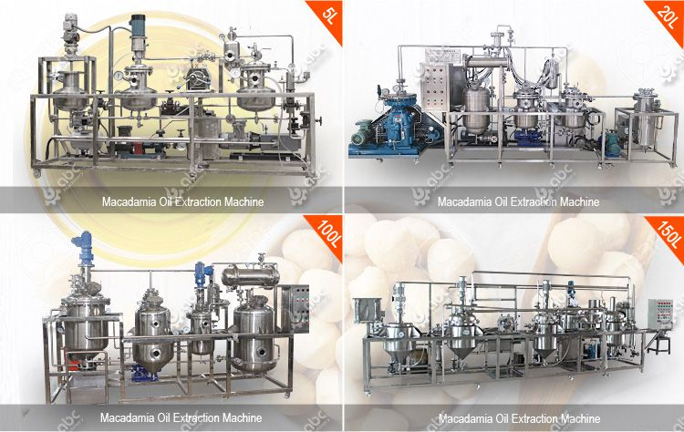 macadamica oil extraction machine for sales