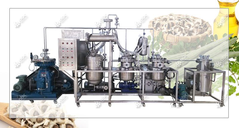 low cost moringa oil extraction machine