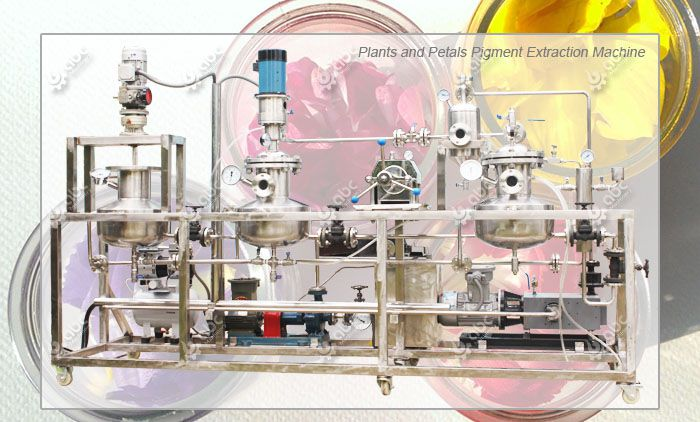 petals pigment extraction machine for sale