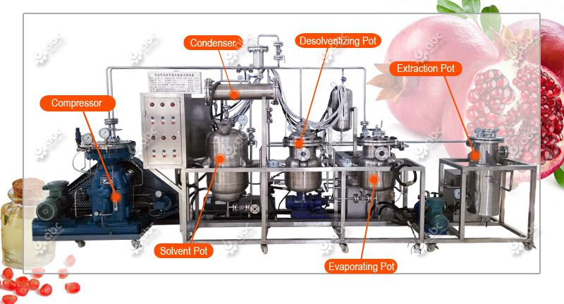 low temperature pomegranate seed oil extracting machine