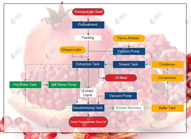 low temperature pomegranate seed oil extraction process