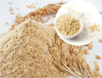 Rice Bran Protein Extraction Machine for Sales