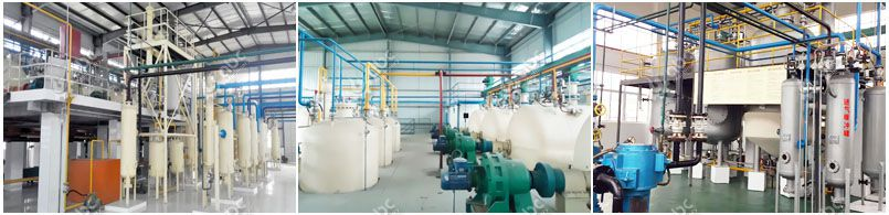 rice bran oil extraction plant projects