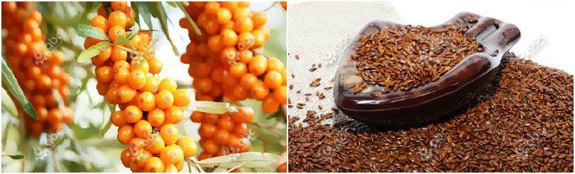 sea buckthorn fruits and seeds