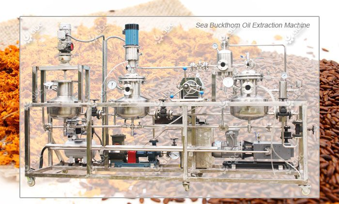 sea buckthorn oil extraction machine for low temperature oil production