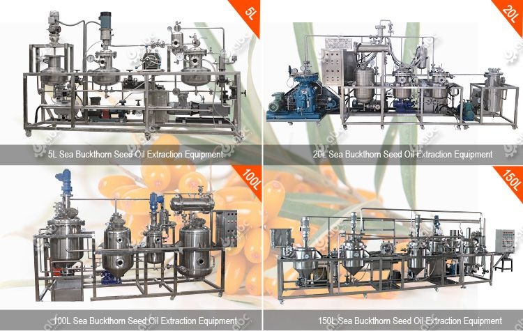 factory sea buckthorn seed oil extraction equipoment