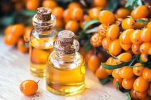 high quality sea buckthorn seed oil