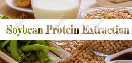 soybean protein processing business plan
