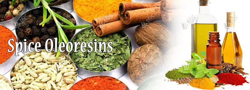 high quality spice oils and oleoresins