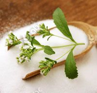 stevia extract benefts